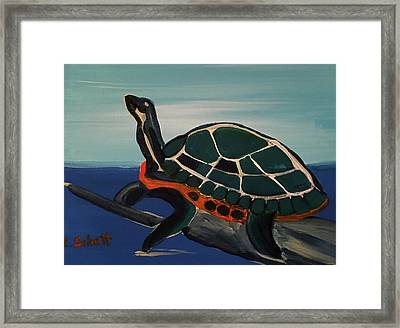 Canal Pointe Turtle Framed Print
