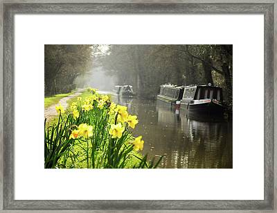 Canalside Daffodils Framed Print