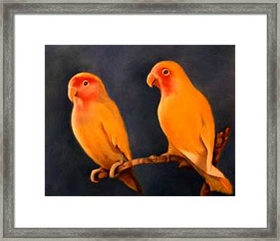 Canaries Framed Print by Jordana Sands