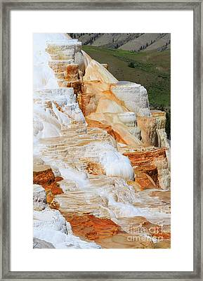 Canary Spring Mammoth Hot Springs Upper Terraces Framed Print by Louise Heusinkveld