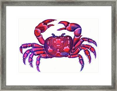 Cancer The Crab Framed Print by Jane Tattersfield