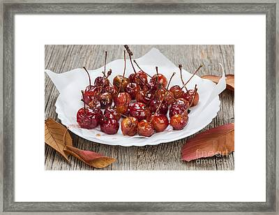 Candied Crab Apples Framed Print by Elena Elisseeva