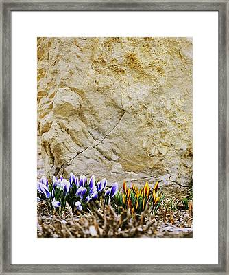 Framed Print featuring the photograph Candles by Evelina Popilian