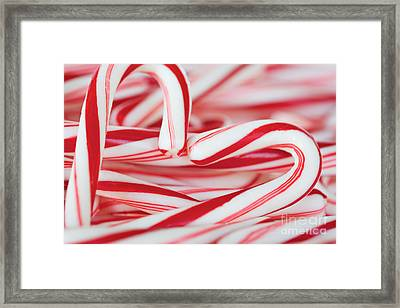 Candy Cane Love Framed Print by Kim Fearheiley