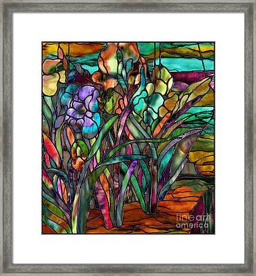 Candy Coated Irises Framed Print
