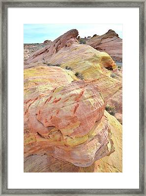 Framed Print featuring the photograph Candy Colored Sandstone In Valley Of Fire by Ray Mathis