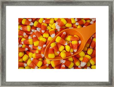 Candy Corn Framed Print by Garry Gay