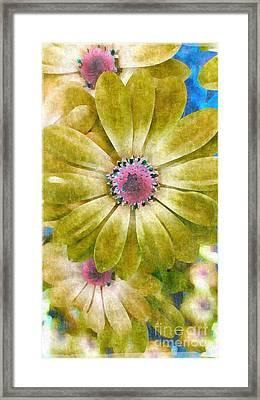Candy Garden Framed Print