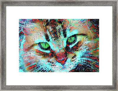 Candy The Colorful Green Eyed Cat Framed Print