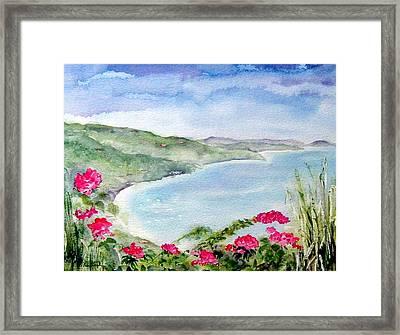 Cane Garden Bay Framed Print