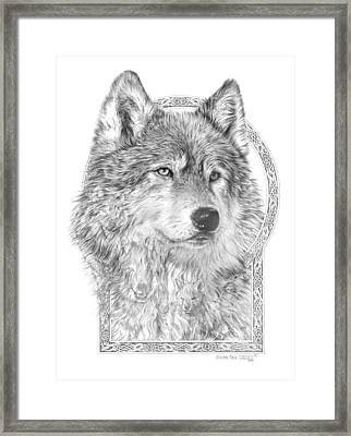 Canis Lupus Iv - Wolf Pack  Alpha Leader Framed Print