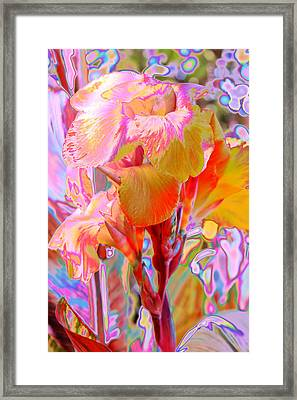 Canna Abstract 3 Framed Print by M Diane Bonaparte