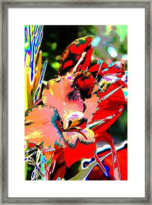 Canna Abstract 7 Framed Print by M Diane Bonaparte