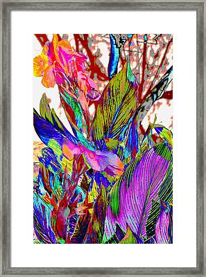 Canna Abstract Framed Print by M Diane Bonaparte