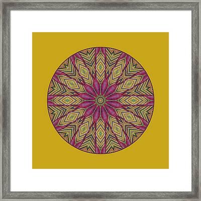 Canna Leaf - Mandala - Transparent Framed Print by Nikolyn McDonald
