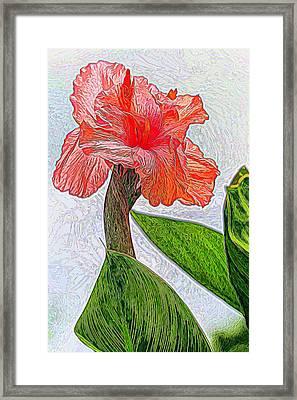 Canna Lily Art Framed Print