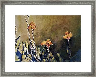Canna Lily Framed Print by Michael Charles Fargo