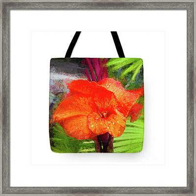Canna Lily Red Bloom - Tote Framed Print by Mona Stut