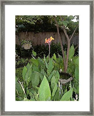 Canna With Birdbath Framed Print by Fred Jinkins