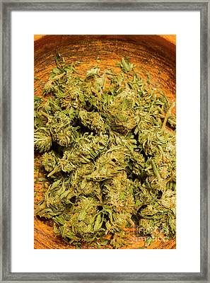 Cannabis Bowl Framed Print
