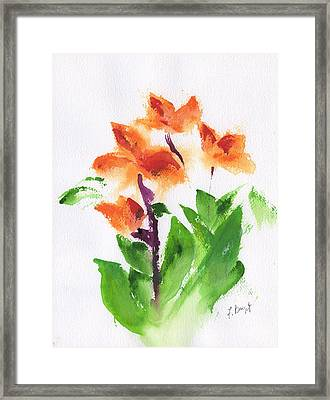 Cannas Abstract Framed Print by Frank Bright