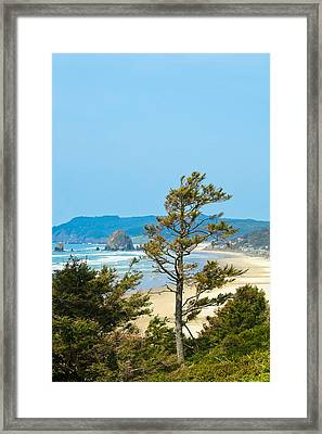 Cannon Beach From The Distance Framed Print by David Patterson