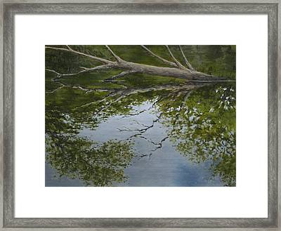 Canoe Painting 6 Framed Print by Jason Sawtelle