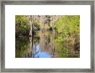 Canoeing On The Hillsborough River Framed Print by Carol Groenen