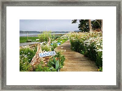 Framed Print featuring the photograph Canoes By Mike-hope by Michael Hope