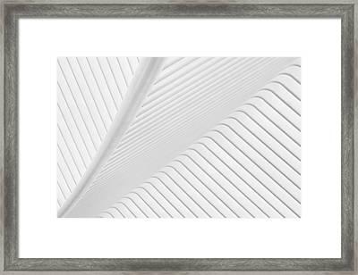 Canopy. Framed Print by Greetje Van Son