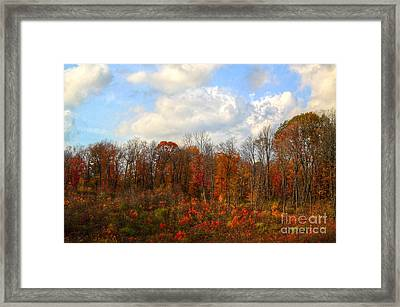 Cant Exspress Framed Print by Robert Pearson
