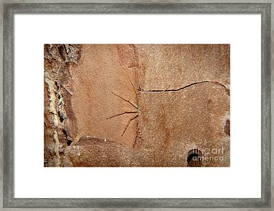 Can't See Me Framed Print