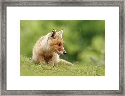 Can't Stand The Rain - Little Fox Kit Framed Print
