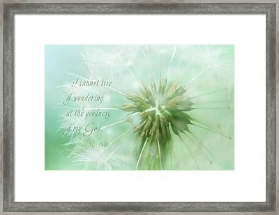 Can't Tire Of Wondering Framed Print