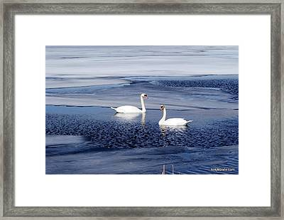 Can't Wait For Spring Framed Print by Lois Lepisto