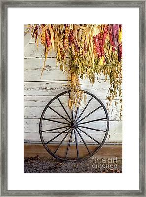 Canterbury Wheel  Framed Print by Pat Lucas