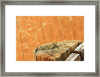 Cantigny Fence Post Framed Print
