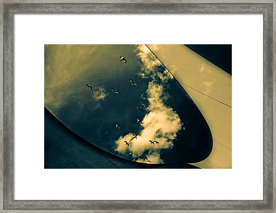 Canvas Seagulls Framed Print by Bob Orsillo