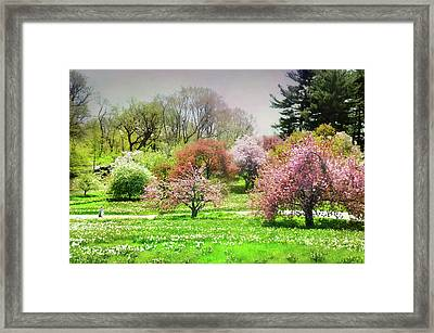 Framed Print featuring the photograph Garden Canvas  by Diana Angstadt