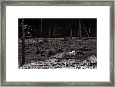 Canyon Alpha Love Story Unsigned Framed Print