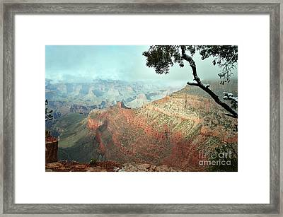 Canyon Captivation Framed Print