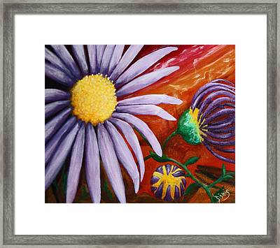 Canyon Flower Framed Print by Dixie Hester