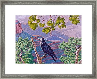 Canyon Jester Framed Print