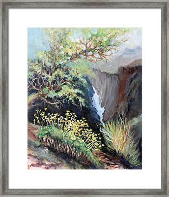 Canyon Land Framed Print