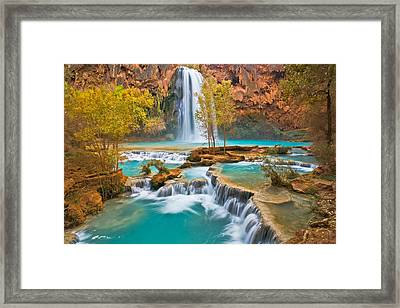 Canyon Oasis Framed Print by Guy Schmickle