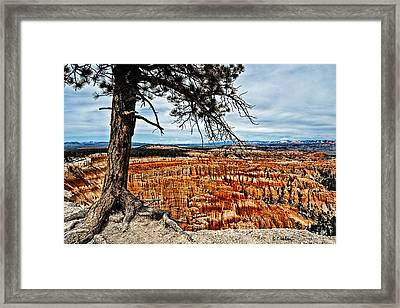 Canyon Overlook Framed Print by Christopher Holmes