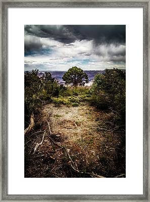 Canyon Sentinel Framed Print