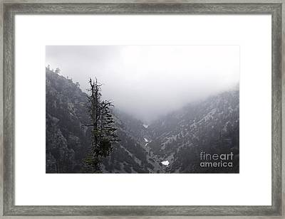 Canyon Framed Print by Viktor Savchenko