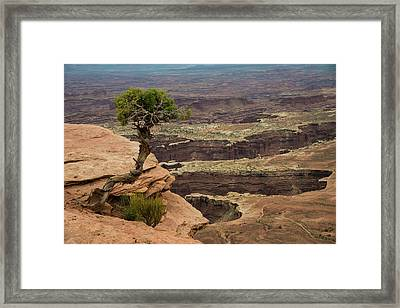 Framed Print featuring the photograph Canyonlands by Gary Lengyel