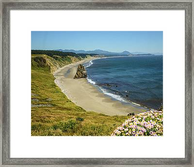 Cape Blanco On The Oregon Coast By Michael Tidwell Framed Print